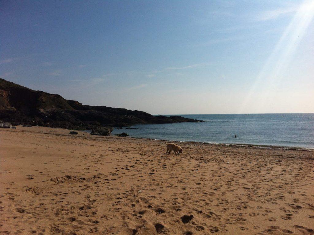 Gara Rock Beach, South Devon. Photo by: Kate Cotton.