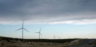 Loma Blanca IV Wind Farm. Photo by: Federico Lopez.